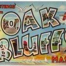 OAK BLUFFS, Massachusetts large letter linen postcard Teich