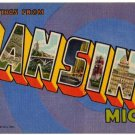 LANSING, Michigan large letter linen postcard Teich