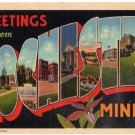 ROCHESTER, Minnesota large letter linen postcard Teich