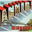 HANNIBAL, Missouri large letter linen postcard Teich