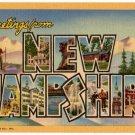NEW HAMPSHIRE large letter linen postcard Teich
