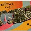 ROSELLE, New Jersey large letter linen postcard Tichnor