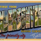 HENDERSONVILLE, North Carolina large letter linen postcard Teich