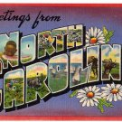 NORTH CAROLINA large letter linen postcard Colourpicture