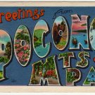POCONO MTS., Pennsylvania large letter linen postcard Metropolitan