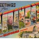 SACRAMENTO, California large letter linen postcard Metropolitan