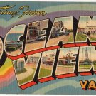 OCEAN VIEW, Virginia large letter linen postcard Tichnor