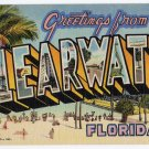 CLEARWATER, Florida large letter linen postcard Teich