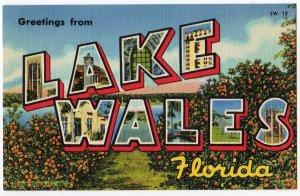 LAKE WALES, Florida large letter linen postcard Teich