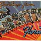 ST. PETERSBURG, Florida large letter linen postcard Tichnor