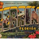 SEBRING, Florida large letter linen postcard Teich