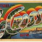 LA CROSSE, Wisconsin large letter linen postcard Teich