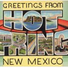 HOT SPRINGS, New Mexico large letter linen postcard Teich