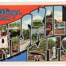 CATSKILL MTS., New York large letter linen postcard Teich