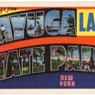 CAYUGA LAKE STATE PARK, New York large letter linen postcard Eastern Photo