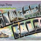 NIAGARA FALLS, New York large letter linen postcard Colourpicture