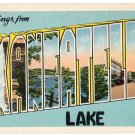 SKANEATELES LAKE, New York large letter linen postcard Eastern Photo