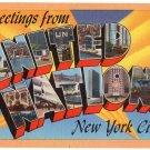 UNITED NATIONS, New York large letter linen postcard Tichnor