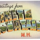 WHITE MOUNTAINS, New Hampshire large letter linen postcard Tichnor