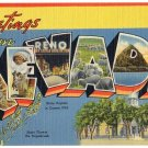 NEVADA large letter linen postcard Tichnor