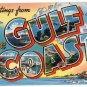 GULF COAST large letter linen postcard Colourpicture
