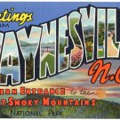 WAYNESVILLE, North Carolina large letter linen postcard Teich