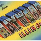 MAYWOOD, Illinois large letter linen postcard Teich
