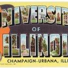 UNIVERSITY OF ILLINOIS large letter linen postcard Teich