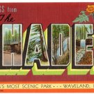 SHADES, Indiana large letter linen postcard Teich