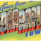 CEDAR RAPIDS, Iowa large letter linen postcard Teich
