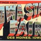 IOWA STATE FAIR large letter linen postcard Teich