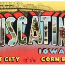 MUSCATINE, Iowa large letter linen postcard Teich