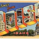 BOISE, Idaho large letter linen postcard Teich