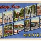GRAND RAPIDS, Michigan large letter linen postcard Teich