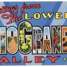 Lower RIO GRANDE VALLEY, Texas large letter linen postcard Teich