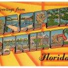 TARPON SPRINGS, Florida large letter linen postcard Metropolitan
