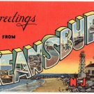 KEANSBURG, New Jersey large letter linen postcard Teich