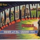PUNXSUTAWNEY, Pennsylvania large letter linen postcard Curt Teich