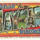 HAYWARD, Wisconsin large letter linen postcard Teich