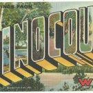 MINOCQUA, Wisconsin large letter linen postcard Teich