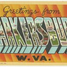 PARKERSBURG, West Virginia large letter linen postcard Teich