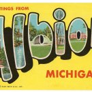 ALBION, Michigan large letter postcard Teich