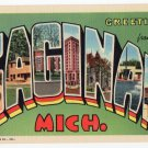 SAGINAW, Michigan large letter linen postcard Teich