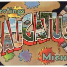 SAUGATUCK, Michigan large letter linen postcard Teich