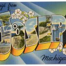 ST. JOSEPH, Michigan large letter linen postcard Tichnor
