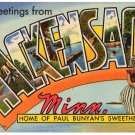HACKENSACK, Minnesota large letter linen postcard Teich