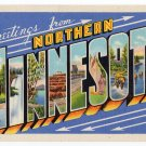 NORTHERN MINNESOTA large letter linen postcard Teich