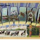 ALASKA large letter linen postcard Teich