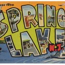 SPRING LAKE, New Jersey large letter linen postcard Teich