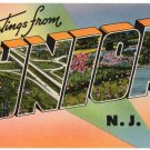 UNION, New Jersey large letter linen postcard Tichnor